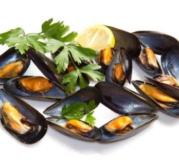 Le marché aux poissons à Fécamp